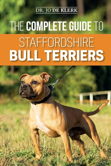 gUIDE TO American Staffordshire TerrierS
