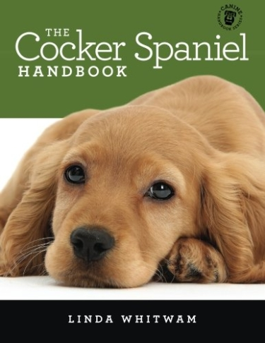 Guide to Cocker Spaniels