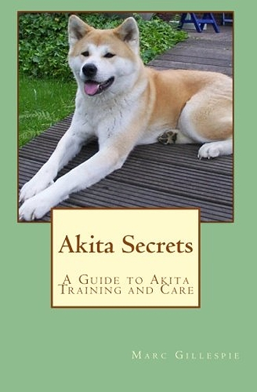 Guide to Akitas