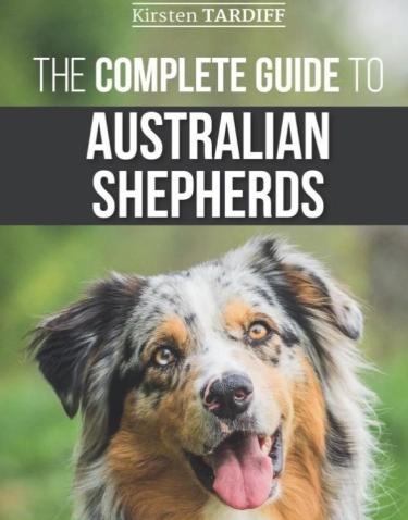 Guide to Australian Shepherds