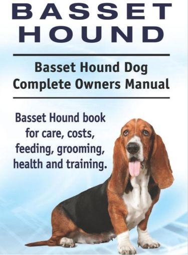 Guide to Basset Hounds