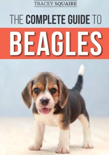 Guide to Beagles