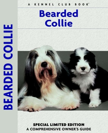 Guide to Bearded Collies