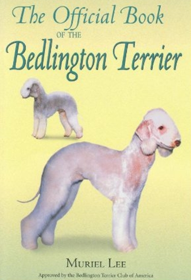 Guide to Bedlington Terriers