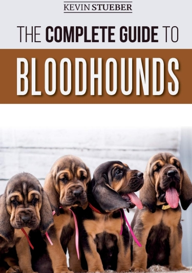 Guide to Bloodhounds