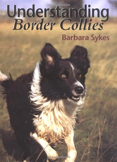 Guide to Border Collies