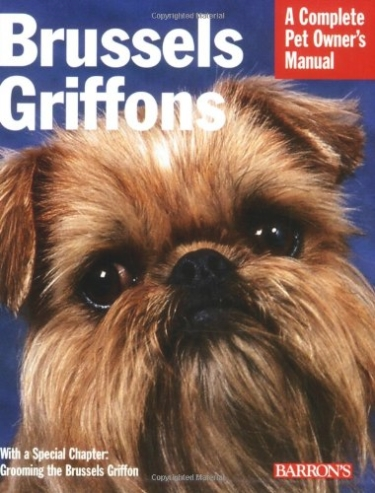 Complete Guide to Brussels Griffon