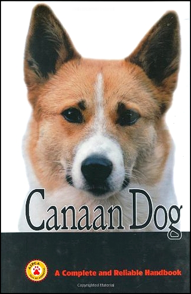 Guide to Canaan Dog