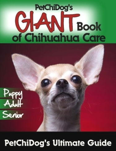 Giant Book of Care