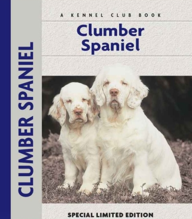 Guide to Clumber Spaniel