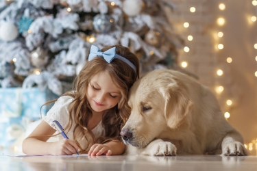 Kennel.com Guide to Dogs