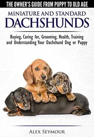 Guide to Dachshunds