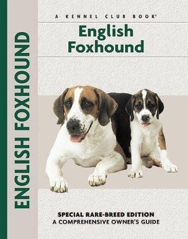 Guide to English Foxhounds
