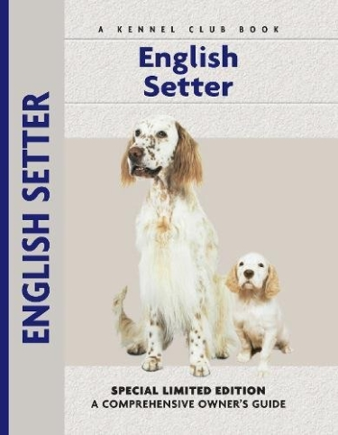 Guide to English Setter