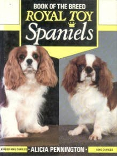 Guide to English Toy Spaniels