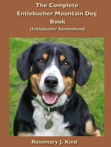 Complete Guide to the Entlebucher Mountain Dog