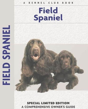 Guide to Field Spaniels