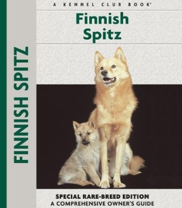 Guide to the Finnish Spitz