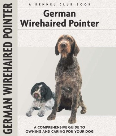 Guide to the German Wirehaired Pointer