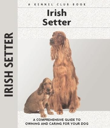 Guide to the Irish Setter