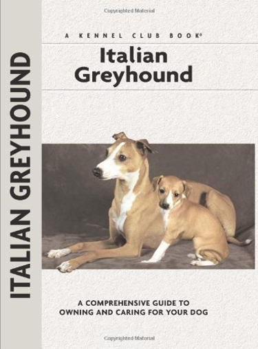 Guide to the Italian Greyhound