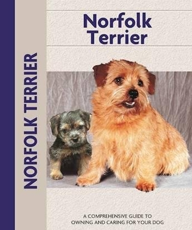 Guide to the Norfolk Terrier
