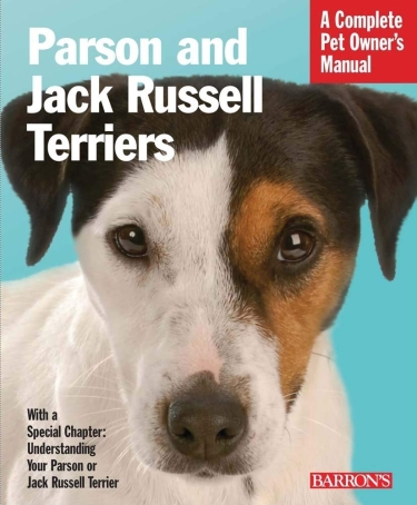 Guide to Parson Russell Terrier