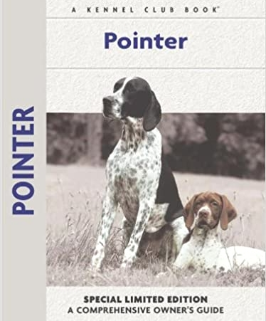 Guide to the Pointer