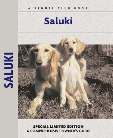 Guide to the Saluki Dog