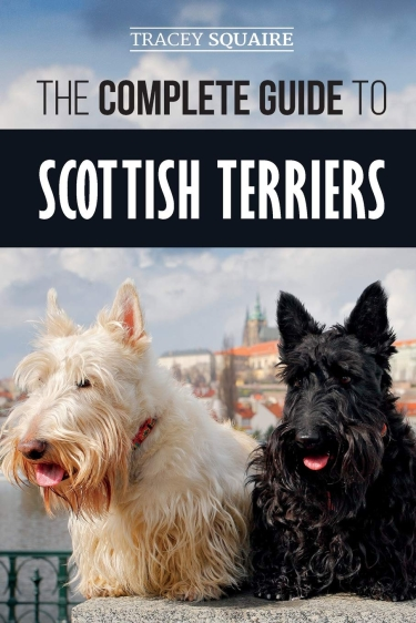 Complete Guide to Scottish Terriers