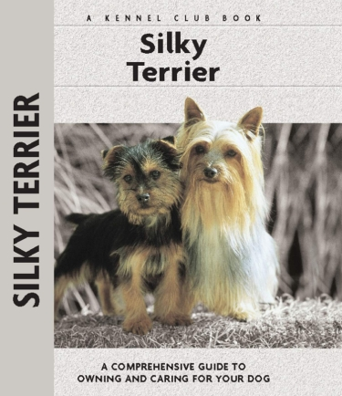 Guide to the Silky Terrier