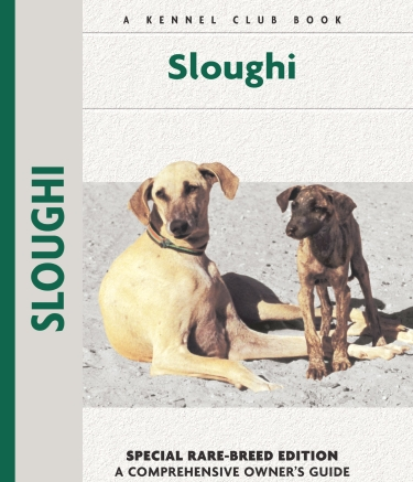 Guide to the Sloughi