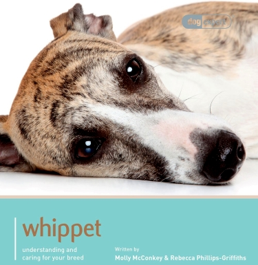 Guide to the Whippet