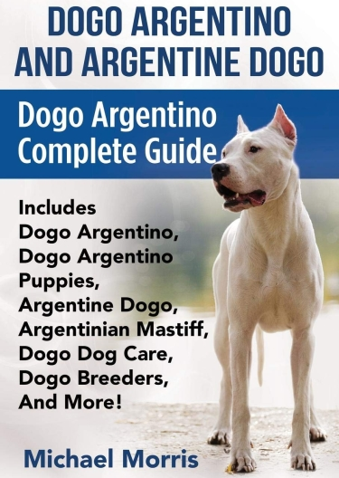 Guide to the Dogo Argentino