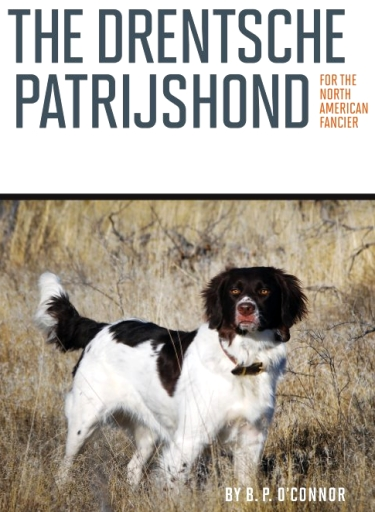 Guide to the Dutch Partridge Dog