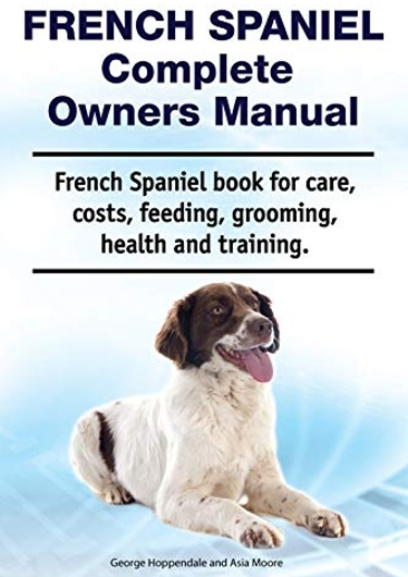 Complete Guide to the French Spaniel