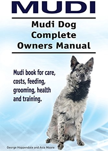 Complete Guide to the Mudi Dog