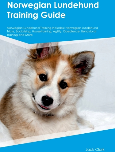 Norwegian Lundehund Training Guide