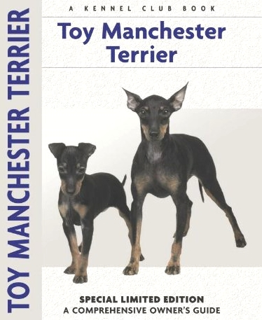 Guide to the Toy Manchester Terrier