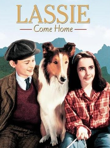 Lassie Come Home - movie poster