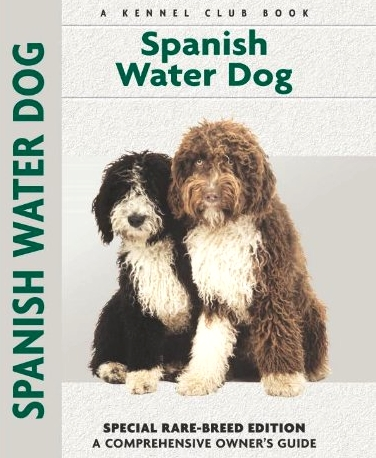 Spanish Water Dog Limited Edition