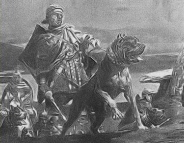 Molossus with Roman Army